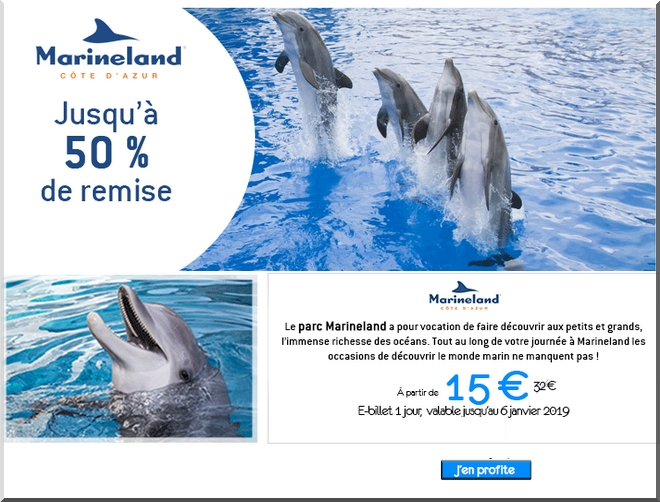 reduction parc disney