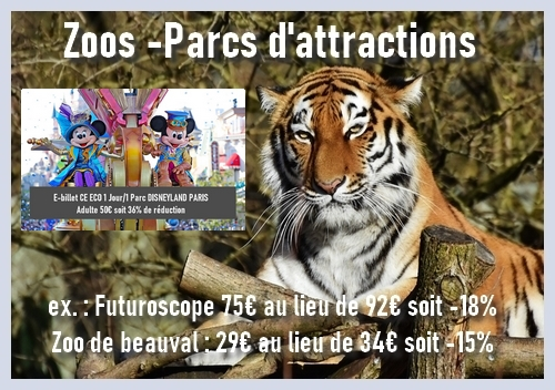 reduction parc attraction